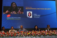Microfinance and Food Security(12)