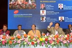Microfinance Households(1)